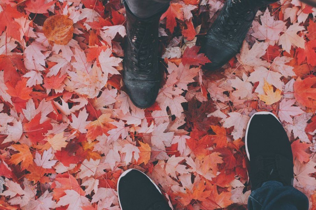 5 Famous Memoir Books Worth Reading (At Least Once): Stepping In Leaves